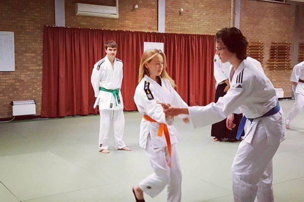 Aikido kids
